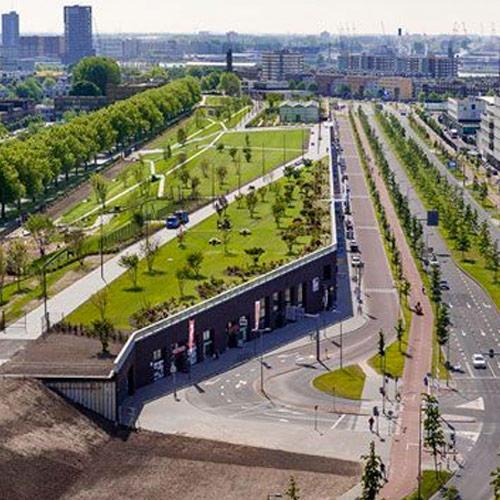 Oprdracht Arbor Consultancy Vierhaven strip Rotterdam