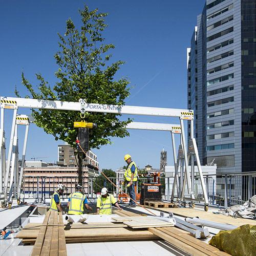 opdracht Arbor Consultancy moreelsebrug Utrecht boom vast zetten
