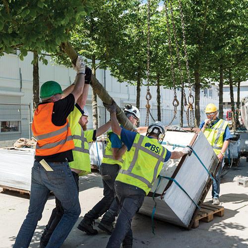 Arbor Consultancy moreelsebrug Utrecht bomen klaar zetten